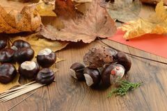 Αριθμοί κάστανων φιλοσόφων όπως τη χελώνα στο χρόνο φθινοπώρου με το thooth Στοκ Εικόνες