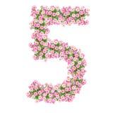 Αριθμοί 5 λουλουδιών Στοκ Εικόνες