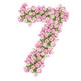 Αριθμοί 7 λουλουδιών Στοκ φωτογραφία με δικαίωμα ελεύθερης χρήσης