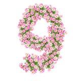 Αριθμοί 9 λουλουδιών Στοκ Φωτογραφίες