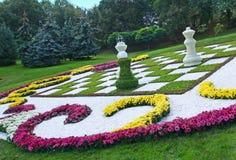 Αριθμοί σκακιού από τα χρυσάνθεμα Στοκ Φωτογραφίες