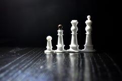 Αριθμοί σκακιού μερών Στοκ Εικόνες