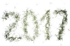 Αριθμοί του νέου έτους από τις βελόνες στοκ εικόνες