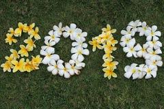 Αριθμοί των κίτρινων και άσπρων λουλουδιών στην πράσινη χλόη στοκ εικόνες με δικαίωμα ελεύθερης χρήσης