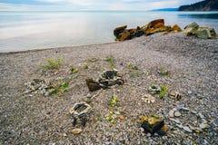 Αριθμοί των χαλικιών στην παραλία Στοκ εικόνα με δικαίωμα ελεύθερης χρήσης
