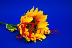 Αριθμού pi ήλιων λουλουδιών αυξανόμενη βιβλίων ημερολογίων αρίθμηση αριθμού σπειρών φυσικής μαθηματικών τμημάτων σημειωματάριων χ Στοκ εικόνες με δικαίωμα ελεύθερης χρήσης