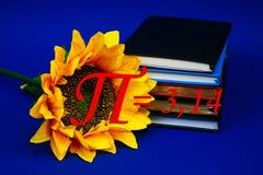 Αριθμού pi ήλιων λουλουδιών αυξανόμενο βιβλίων ημερολογίων μπλε Μαρτίου σχολικής ημέρας αρίθμησης αριθμού σπειρών φυσικής μαθηματ Στοκ Εικόνα