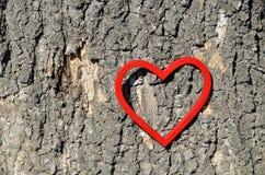 Αριθμός καρδιών για τον κορμό δέντρων Στοκ φωτογραφίες με δικαίωμα ελεύθερης χρήσης