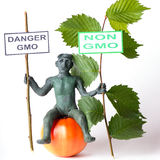 Αριθμός κινδύνου έννοιας ΓΤΟ ενός ατόμου Στοκ εικόνα με δικαίωμα ελεύθερης χρήσης
