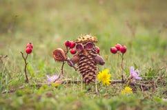 Αριθμός κώνων πεύκων φθινοπώρου Στοκ Εικόνες