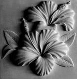 Αριθμός λουλουδιών Στοκ Φωτογραφία