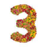 Αριθμός 3 που γίνεται από τα λουλούδια Zinnias Στοκ Φωτογραφία
