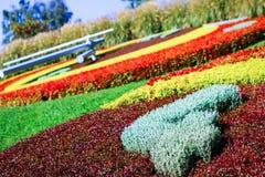 Αριθμός 4 στο ρολόι λουλουδιών στη Γενεύη, Ελβετία Στοκ Φωτογραφίες