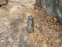 Αριθμός 8 στο σημάδι στο έδαφος με τις χλόες στοκ φωτογραφίες