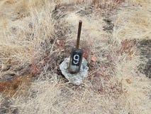 Αριθμός 9 στο σημάδι στο έδαφος με τις χλόες στοκ εικόνες