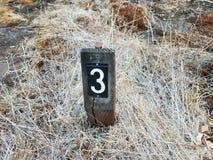 Αριθμός 3 στο σημάδι στο έδαφος με τις χλόες στοκ εικόνα με δικαίωμα ελεύθερης χρήσης