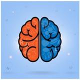 Αριστερός εγκέφαλος και σωστό σύμβολο εγκεφάλου, σημάδι δημιουργικότητας, διανυσματική απεικόνιση