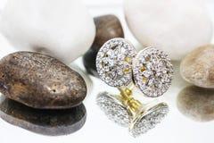 Αριστοκρατικά σκουλαρίκια Στοκ εικόνες με δικαίωμα ελεύθερης χρήσης