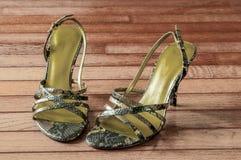 Αριστοκρατικό υψηλό βαλμένο τακούνια θηλυκό παπούτσι Στοκ φωτογραφία με δικαίωμα ελεύθερης χρήσης
