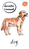 Αρκετά καφετί σκυλί διανυσματική απεικόνιση