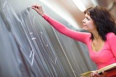 Αρκετά νέος δάσκαλος Στοκ Φωτογραφία
