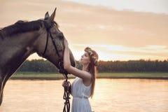 Αρκετά ξανθό κορίτσι που κτυπά ένα άλογο στοκ εικόνες