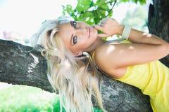 Αρκετά προκλητική ξανθή γυναίκα που βρίσκεται στον πάγκο δέντρων Στοκ φωτογραφίες με δικαίωμα ελεύθερης χρήσης