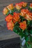 Αρκετά φρέσκα πορτοκαλιά τριαντάφυλλα σε ένα ξύλινο υπόβαθρο Στοκ Φωτογραφίες