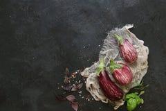 Αρκετοί ζέβρα μελιτζάνα στο σκοτεινό υπόβαθρο πλακών Στοκ Εικόνα