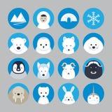 Αρκτικά επίπεδα εικονίδια ζώων καθορισμένα Ελεύθερη απεικόνιση δικαιώματος