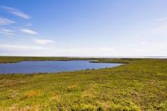 Αρκτικά λίμνες και tundra επάνω από τον αρκτικό κύκλο στοκ φωτογραφία με δικαίωμα ελεύθερης χρήσης
