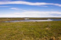 Αρκτικά λίμνες και tundra επάνω από τον αρκτικό κύκλο στοκ εικόνες με δικαίωμα ελεύθερης χρήσης