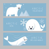 Αρκτικό έμβλημα, πολική αρκούδα, σφραγίδα, φάλαινα Beluga διανυσματική απεικόνιση