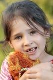 αρμέξτε το δόντι Στοκ Φωτογραφίες