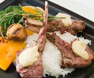 αρνί γευμάτων μπριζολών Στοκ Φωτογραφίες