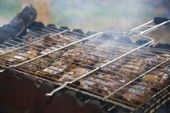 Αρνί kebabs Στοκ Εικόνα
