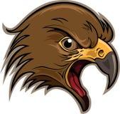 αρπακτικό πτηνό Στοκ Εικόνες