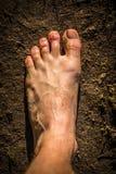 Αρσενικά γυμνά πόδια στον τρόπο στοκ εικόνες