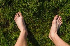 Αρσενικά γυμνά πόδια στο λιβάδι στοκ εικόνα με δικαίωμα ελεύθερης χρήσης
