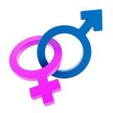 Αρσενικά και θηλυκά σημάδια που μπλέκονται Στοκ φωτογραφίες με δικαίωμα ελεύθερης χρήσης