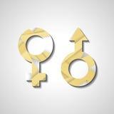 Αρσενικά και θηλυκά σύμβολα γένους Στοκ εικόνες με δικαίωμα ελεύθερης χρήσης