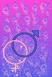 Αρσενικά και θηλυκά σύμβολα Στοκ εικόνες με δικαίωμα ελεύθερης χρήσης