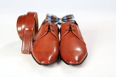 Αρσενικά κομψά καφετιά παπούτσια με το δεσμό ζωνών και τόξων Στοκ Φωτογραφία