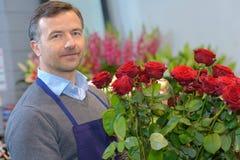 Αρσενικά κόκκινα τριαντάφυλλα ανθοδεσμών εκμετάλλευσης ανθοκόμων Στοκ Φωτογραφία