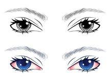 Αρσενικά μάτια με τα φρύδια διανυσματική απεικόνιση