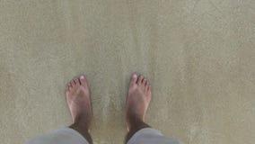 Αρσενικά πόδια στα σορτς που στέκονται στην άμμο και τα κύματα της άποψης θαλάσσιου νερού Αρσενικά πόδια στα κύματα θάλασσας και  απόθεμα βίντεο
