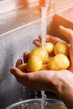 Αρσενικά χέρια που πλένουν τις πατάτες Στοκ Εικόνες
