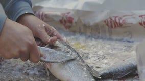 Αρσενικά χέρια των ψαριών ξελεπιάσματος προμηθευτών αγοράς απόθεμα βίντεο