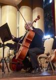 Αρσενική άσκηση μουσικών viola πριν από την επίδειξη Στοκ Φωτογραφία