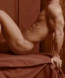 αρσενική μελέτη αριθμού Στοκ Φωτογραφίες